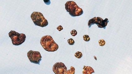 """Археологи знайшли """"скіфське золото"""" - фото 1"""
