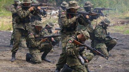 Сухопутні війська Польщі - фото 1
