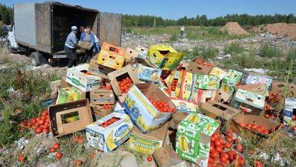 Найчастіше знищувалися нелегально ввезені до країни яблука, груші, персики, помідори і баклажани - фото 1
