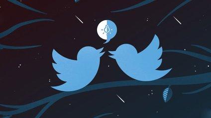 """Twitter впровадив функцію """"нічного режиму"""" - фото 1"""