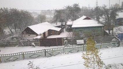 Три області України притрусило снігом - фото 1