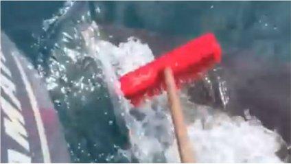 Австралієць відігнав величезну акулу шваброю: кумедне відео - фото 1