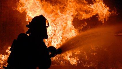На Вінничині під час пожежі загинув власник будинку - фото 1