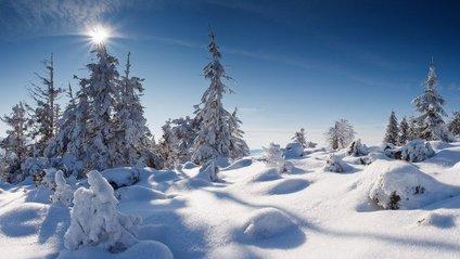 В Карпатах - мінус десь та 30 см снігу - фото 1