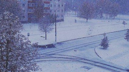 Як під Києвом замело першим снігом - фото 1