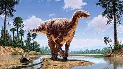 Науковці вперше виявили скам'янілий мозок динозавра - фото 1