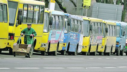 "На Україну чекає реформа ""маршруто"" - фото 1"