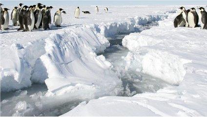 Льодовий щит на заході Антарктики тріснув зсередини - фото 1