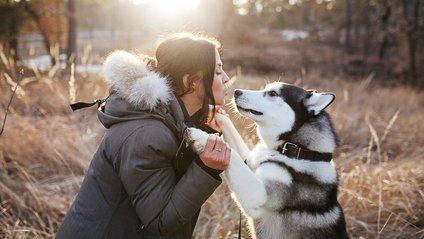 Собака і людина - фото 1