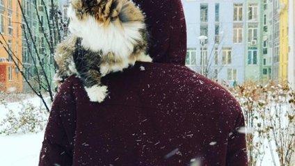 Київ знову замело снігом: фото користувачів - фото 1