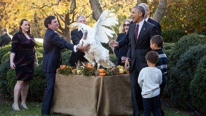 Як Обама відзначає День подяки - фото 1