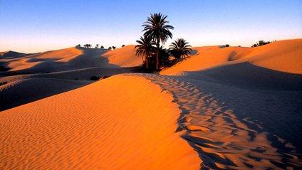 Стало відомо, чому Сахара перетворилася у пустелю - фото 1