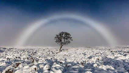 З'явилося фото неймовірної білої веселки - фото 1