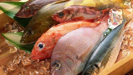 Риба - фото 1