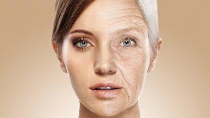 Вчені знайшли спосіб зупинити старіння - фото 1