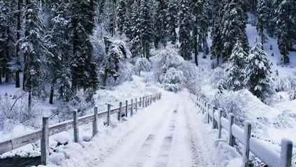 Синоптик розповіла, коли Україну засипле снігом - фото 1