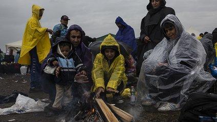 Біженці - фото 1