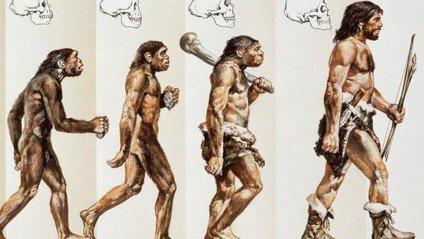 Предки людей - фото 1