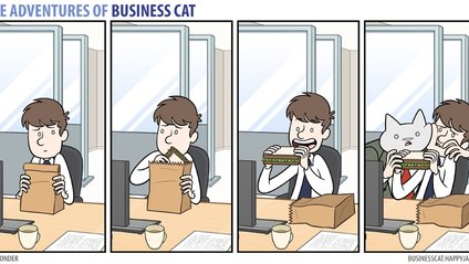 Як виглядала б робота, якби усім керували коти - фото 1