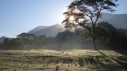 Тасманія - фото 1