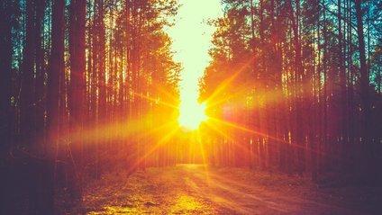 Сонце - фото 1