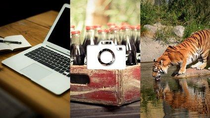 Еволюція Coca-Cola та гарячі клавіші для офісних працівників: 15 березня в трьох фото - фото 1