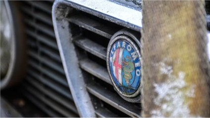 Alfa Romeo Giulia - фото 1