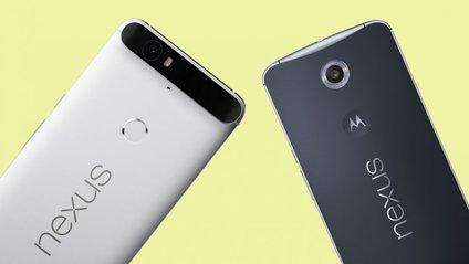 Nexus - фото 1