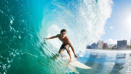 У ПАР кальмар спробував вкрасти дошку для серфінгу: відеофакт - фото 1