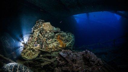 Таємниці підводного світу: неймовірні фото - фото 1