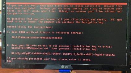 В Україні зупинили кібератаку вірусу Petya.A - фото 1