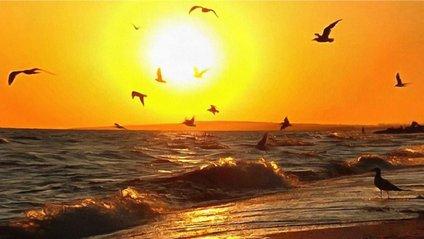 Море - фото 1