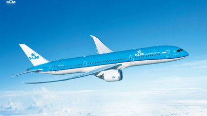 KLM - фото 1