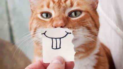 Найпоширеніші причини руйнування зубної емалі - фото 1