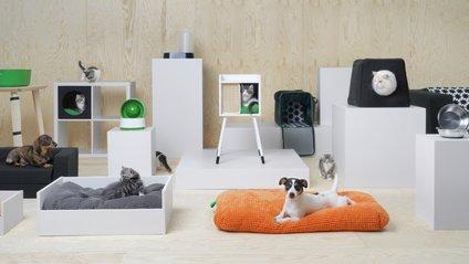 IKEA випустила меблі для домашніх улюбленців - фото 1