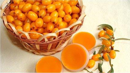 Обліпиха –чемпіон серед фруктів і ягід за вмістом вітаміну Е - фото 1