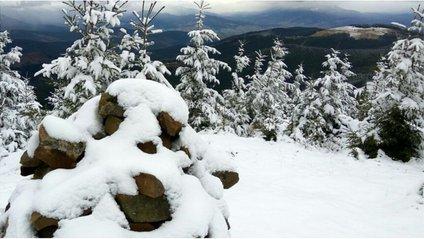 Карпати вже засипало снігом - фото 1