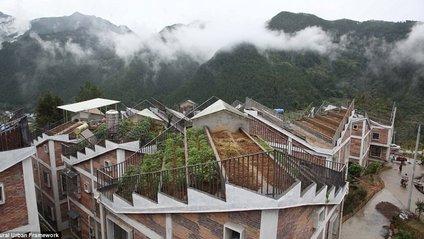 Як виглядає китайське село з фермами на дахах - фото 1