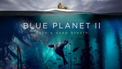 Блакитна Планета не така спокіййна - фото 1