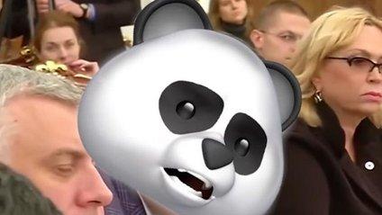 Хто ж ховається під маскою панди? - фото 1