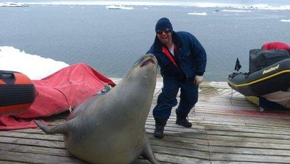 Морське слоненя заснуло в човні українських полярників - фото 1