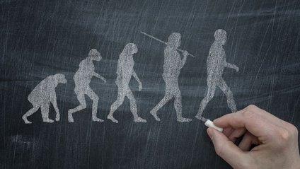 В Індії міністр сумнівається у теорії Дарвіна - фото 1