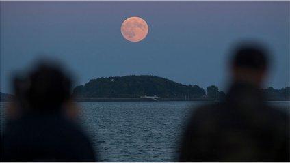 31 січня зійдуться місячне затемнення, супермісяць і блакитний Місяць - фото 1
