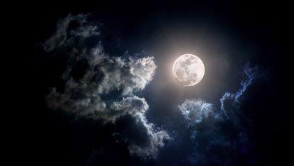 """Уфологи знайшли """"собаку"""" в кратері Місяця - фото 1"""