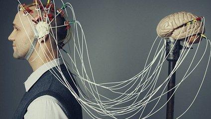 На відео показали рух думки через мозок - фото 1
