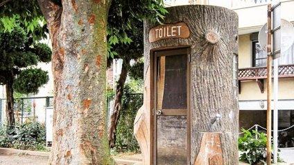 Громадські вбиральні Японії, які вас здивують - фото 1