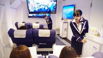 В Японії відкрили ресторан-літак для тих, хто боїться літати - фото 1