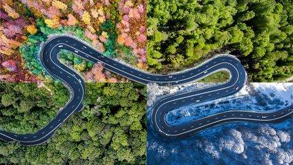 Незвичайні дороги Трансільванії, від яких перехоплює дух - фото 1