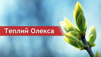 Теплого Олекси святкують 30 березня - фото 1
