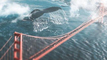 Світ у полоні величезних тварин: фантастичні кадри - фото 1